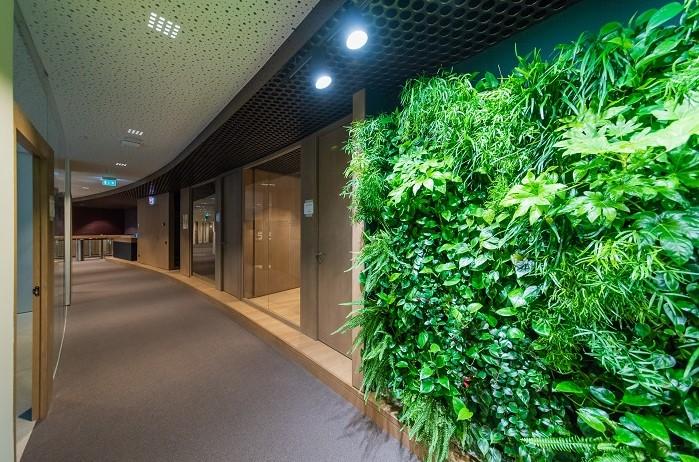 Цельностеклянные раздвижные стены для переговорных комнат